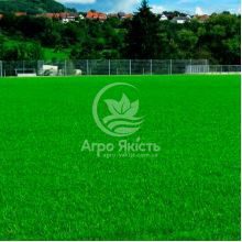 Газонна трава Спортивно - Ігрова 1 кг (Feldsaaten Freudenberger)