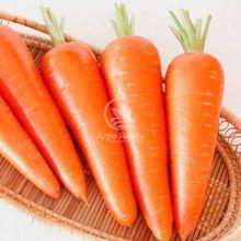 Морква Абако F1 1,4 грама (Seminis)