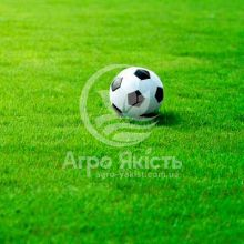 Газонна трава Спортивна Evro Grass 1 кг