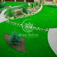 Газонна трава Ліліпут Evro Grass 1 кг