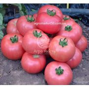 Томат Дімероза F1 / Dimerosa F1 10 насінин, індетермінантний рожевий (Enza Zaden)