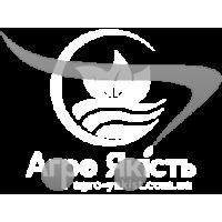 Баклажан Караман F1 / Karaman 15 насінин (Libra Seeds)